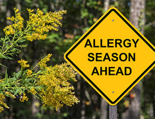 Beating Spring Allergies